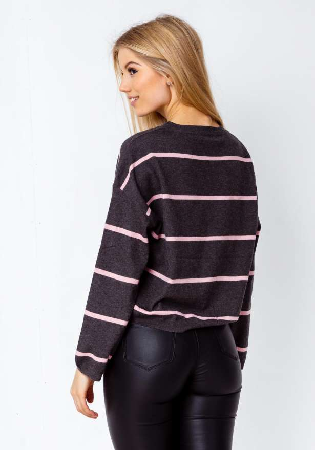 Slightly Cropped Stripe Skater Blouse In Grey